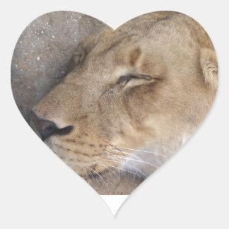Adesivo Coração Leoa do sono