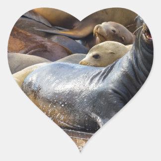 Adesivo Coração Leões de mar na doca de flutuação em San Francisco