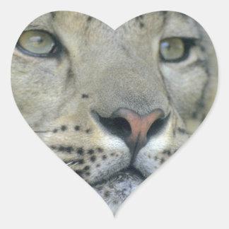 Adesivo Coração leopardo de neve