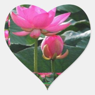 Adesivo Coração LOTUS: Jardim do verde do rosa cor-de-rosa de