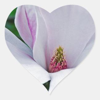 Adesivo Coração Magnólia elegante