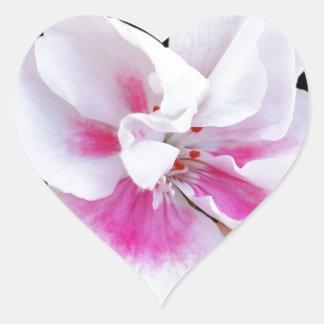 Adesivo Coração Máscaras cor-de-rosa