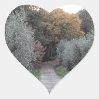 Adesivo Coração Paisagem rural com a estrada asfaltada no outono