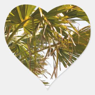 Adesivo Coração Palmeira da costa leste Myrtle Beach famoso