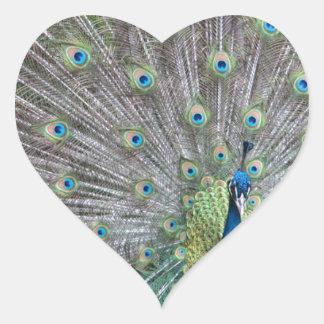 Adesivo Coração Pavão colorido