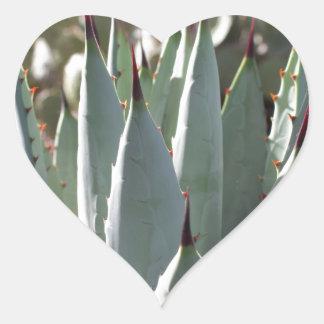 Adesivo Coração Pontos da agave