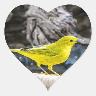 Adesivo Coração Presentes e acessórios do pássaro da toutinegra