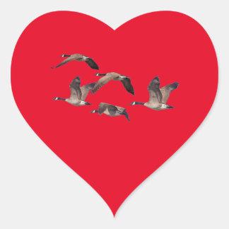 Adesivo Coração Rebanho de gansos selvagens