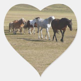 Adesivo Coração Rebanho dos cavalos
