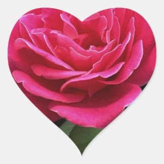 Adesivo Coração Rosa do rosa