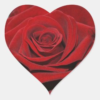 Adesivo Coração Rosa vermelha - Herzförmige autocolante