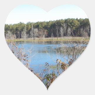 Adesivo Coração Santuário de pássaro do lago sams