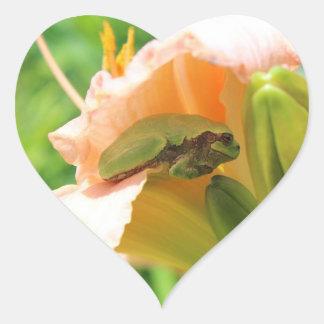 Adesivo Coração Sapo de árvore de sorriso no lírio cor-de-rosa