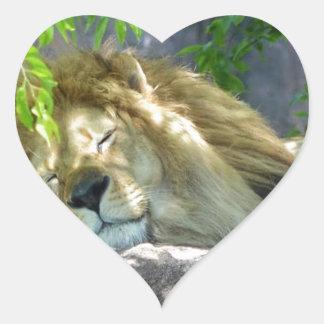 Adesivo Coração sesta do leão