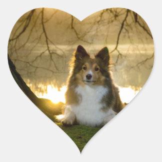 Adesivo Coração sheltie