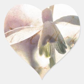 Adesivo Coração Snowdrop 01.01q lírico