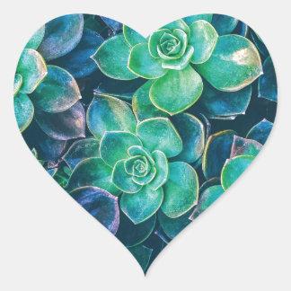 Adesivo Coração Succulents, Succulent, cacto, cactos, verde,