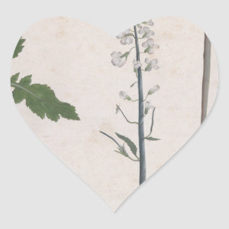 Adesivo Coração Uma planta de rabanete, uma semente, e uma flor