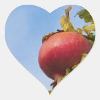 Adesivo Coração Única fruta vermelha da romã na árvore nas folhas