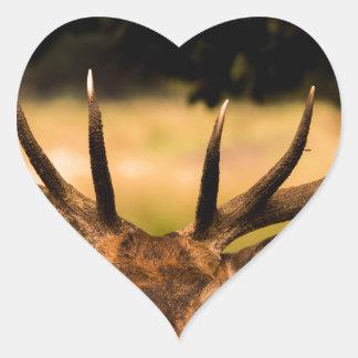 Adesivo Coração veado do parque de richmond
