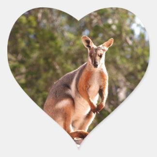 Adesivo Coração Wallaby de rocha amarelo-footed australiano