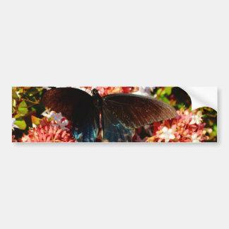 Adesivo De Para-choque Borboleta do preto azul em flores cor-de-rosa