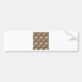 Adesivo De Para-choque caixas dos chacais