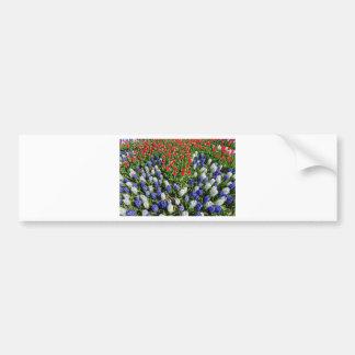 Adesivo De Para-choque Campo de flores com as tulipas azuis e os jacintos