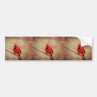 Adesivo De Para-choque Cardinal