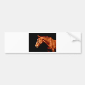 Adesivo De Para-choque cavalo