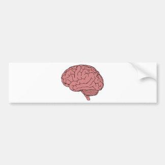 Adesivo De Para-choque Cérebro humano