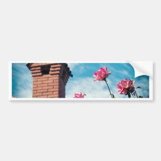 Adesivo De Para-choque Chaminé e rosas selvagens
