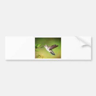 Adesivo De Para-choque Colibri em vôo