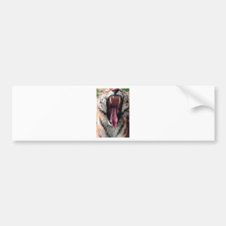 Adesivo De Para-choque Dentes do rolamento do tigre
