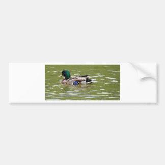 Adesivo De Para-choque duck3