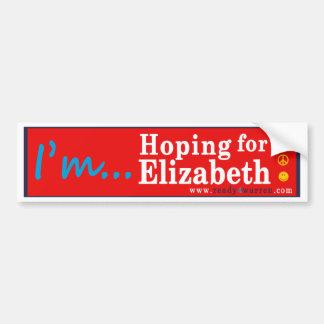 Adesivo De Para-choque Elizabeth Warren para o autocolante no vidro