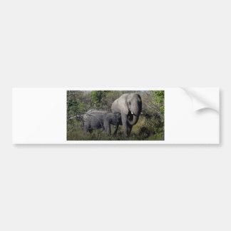 Adesivo De Para-choque Família do elefante africano