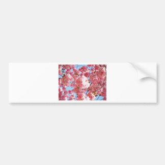 Adesivo De Para-choque Flor de cerejeira japonesa cor-de-rosa