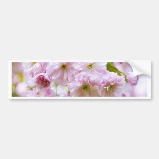 Adesivo De Para-choque Flores cor-de-rosa na árvore de cereja japonesa na