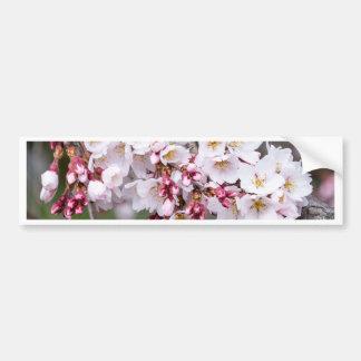 Adesivo De Para-choque Flores de cerejeira
