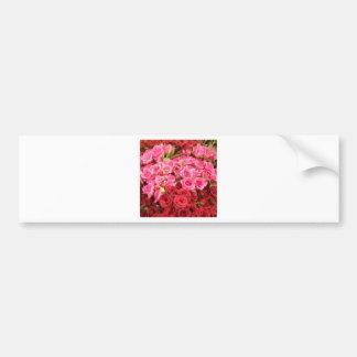 Adesivo De Para-choque Flores nas Filipinas, no rosa e nas rosas