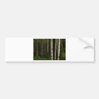 Adesivo De Para-choque Floresta branca