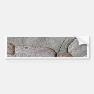 Adesivo De Para-choque Foto macro do latido do pinho