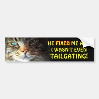 Adesivo De Para-choque Gato abundante: Obtem Meme fixo