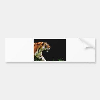 Adesivo De Para-choque Gato perigoso bonito da pele predadora do tigre