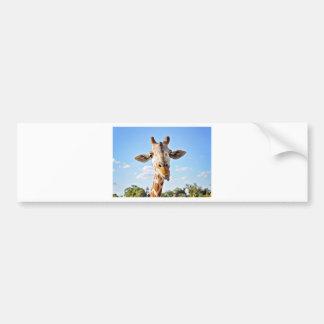 Adesivo De Para-choque Girafa parvo