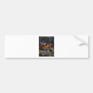 Adesivo De Para-choque Girassóis na exposição