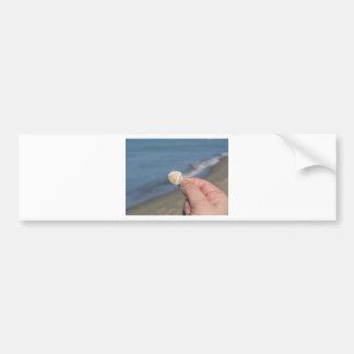 Adesivo De Para-choque Guardarando um seashell na mão