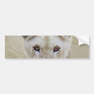 Adesivo De Para-choque Guerreiro branco África do espírito do leão