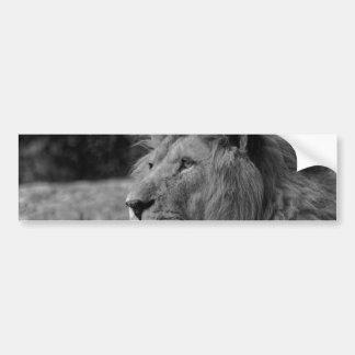 Adesivo De Para-choque Leão preto & branco - animal selvagem
